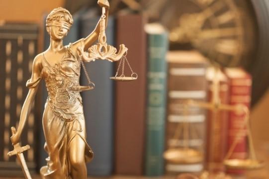 وکیل ملک کیست و چه نقشی دارد 1