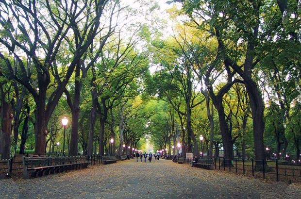محله پارک شهر